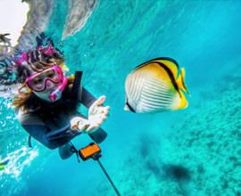 サンゴ礁シュノーケリング体験