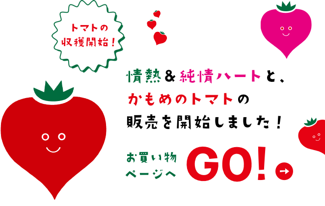 情熱&純情&かもめのトマト 販売開始