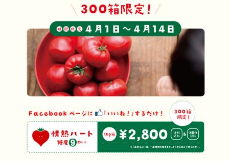 スクリーンショット 2014-04-01 14.47.33